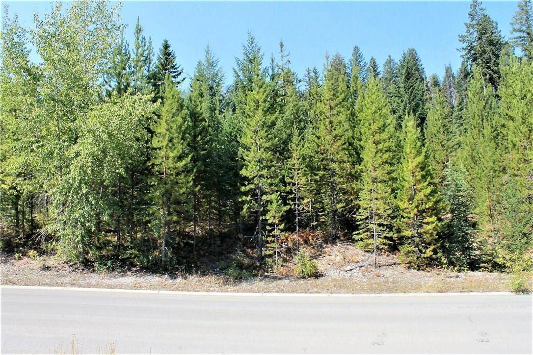 17 Driftwood Place, Elkford | Image 1