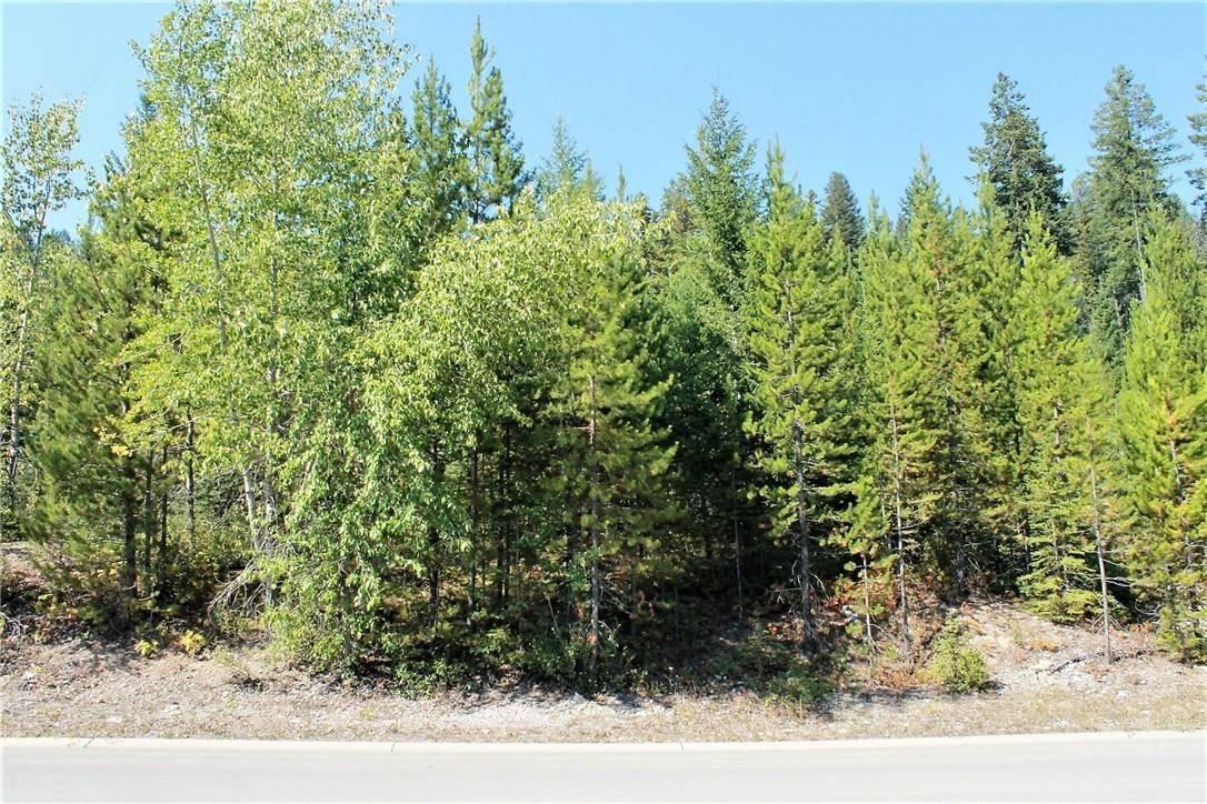 17 Driftwood Place, Elkford | Image 2