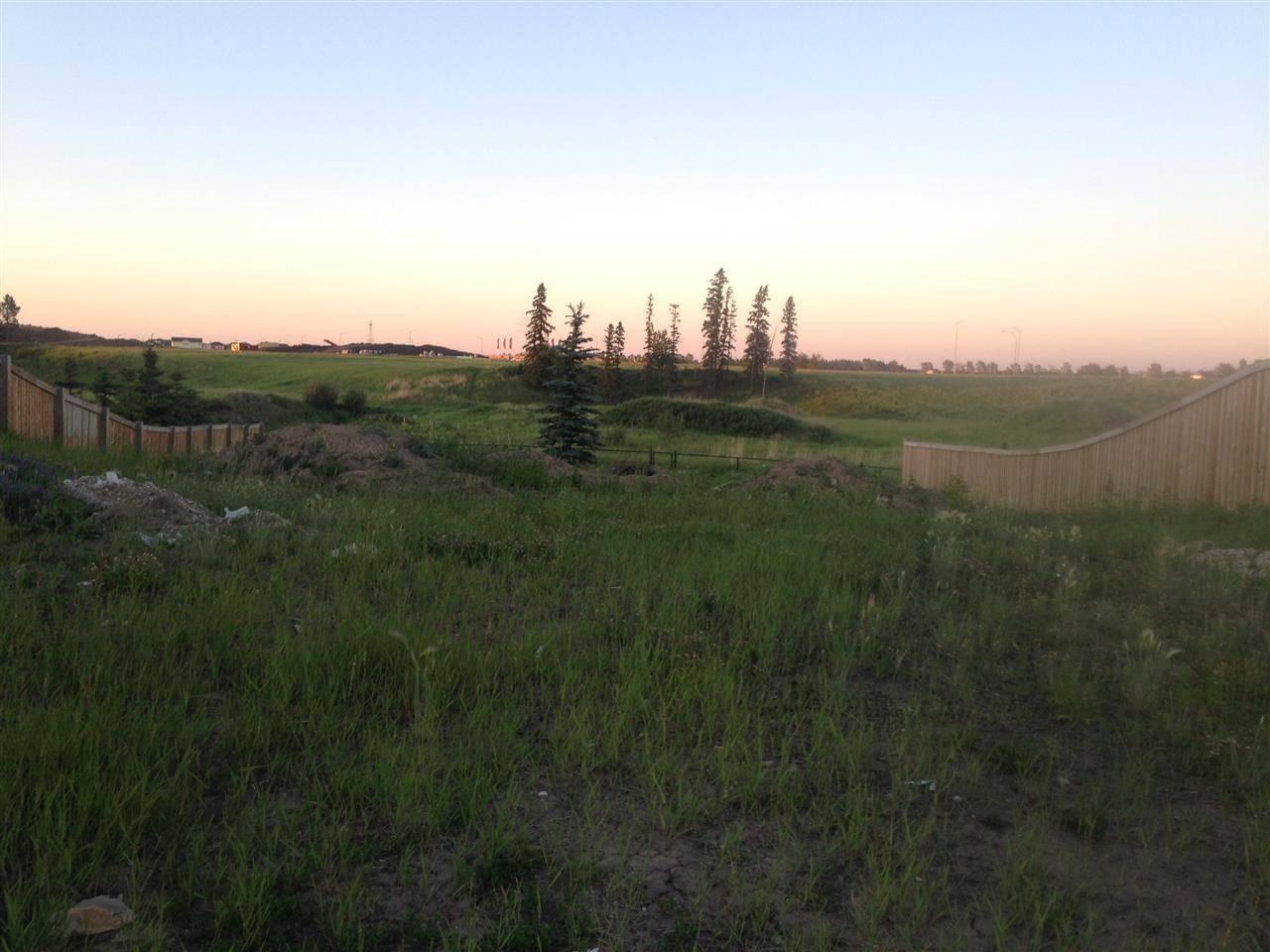 Home for sale at 1712 Adamson Cres Sw Edmonton Alberta - MLS: E4134378