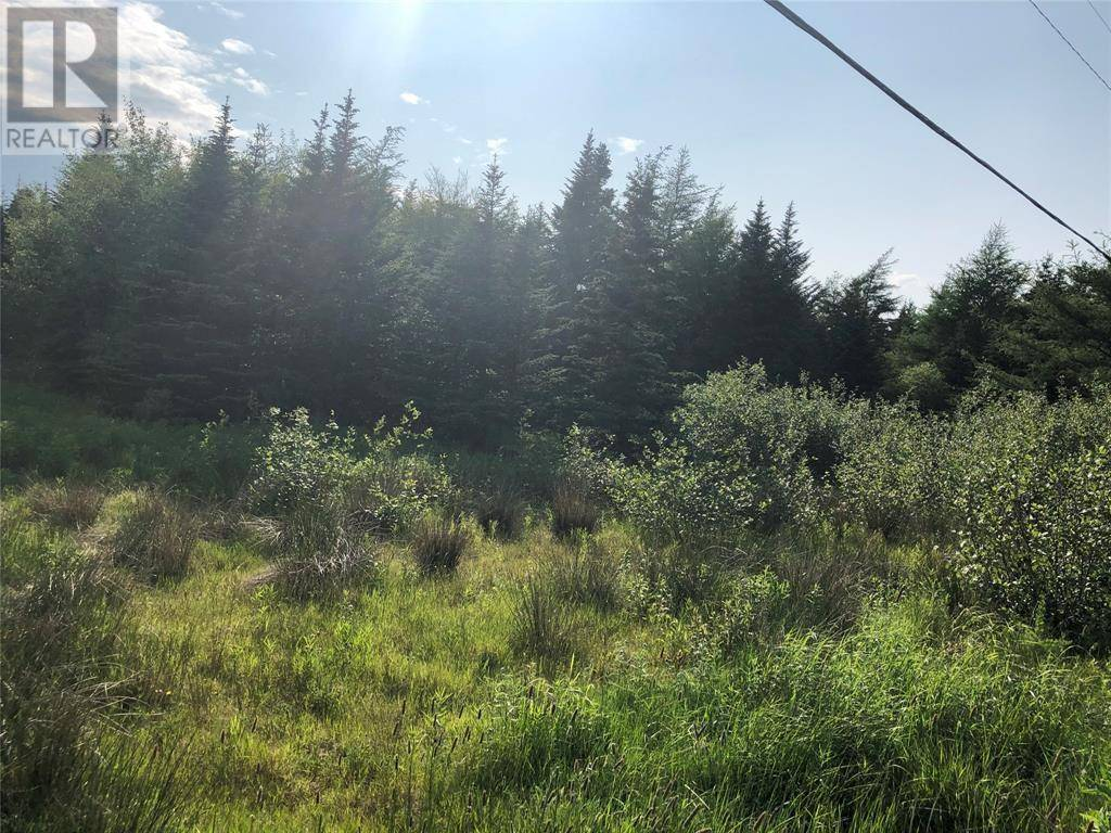 Home for sale at 174 Gallows Cove Rd Witless Bay Newfoundland - MLS: 1212951