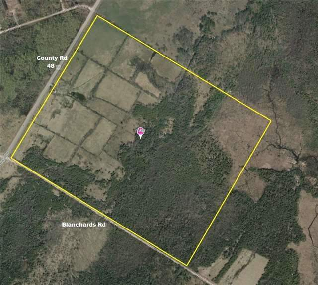 For Sale: 1780 County Rd 48 Road, Kawartha Lakes, ON   0 Bath Property for $699,900. See 2 photos!
