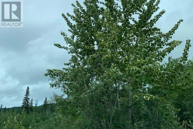Residential property for sale at 188 Wapiti Cres Tumbler Ridge British Columbia - MLS: 184833
