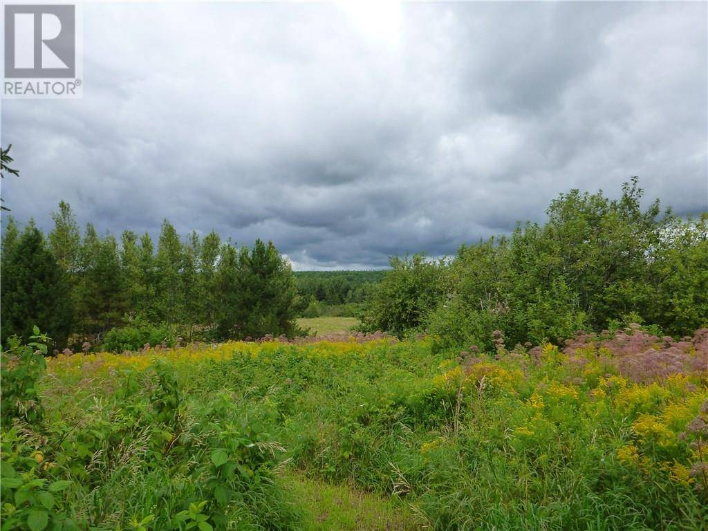 Home for sale at 190 Briggs Cross Rd Lutes Mountain New Brunswick - MLS: M126931