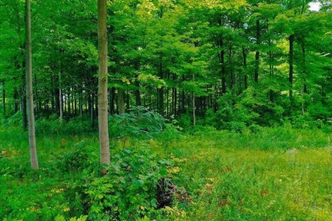Residential property for sale at 1936 Highway 11  Oro-medonte Ontario - MLS: S5087031