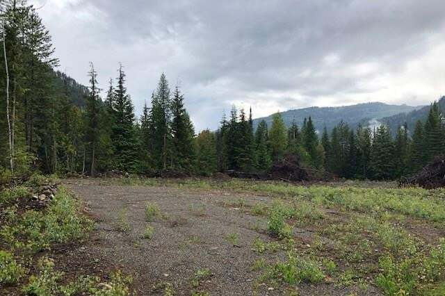 Residential property for sale at 197 Archibald Creek Road  Salmo British Columbia - MLS: 2438684