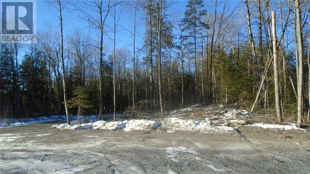 Home for sale at 2 8th Line Road S Pt Norwood Ontario - MLS: 166713