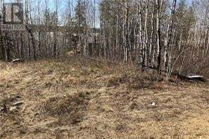 Residential property for sale at 2 Tranquility Hts Big River Rm No. 555 Saskatchewan - MLS: SK822165