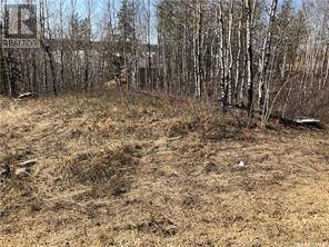 Home for sale at 2 Tranquility Ht Big River Rm No. 555 Saskatchewan - MLS: SK777165