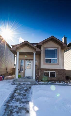 20 Saddlefield Road Northeast, Calgary | Image 2