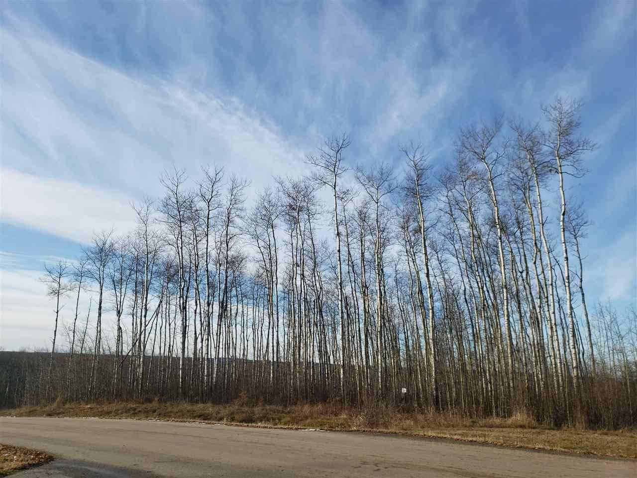 Residential property for sale at 41124 Twp Rd Unit 201 Rural Bonnyville M.d. Alberta - MLS: E4178827