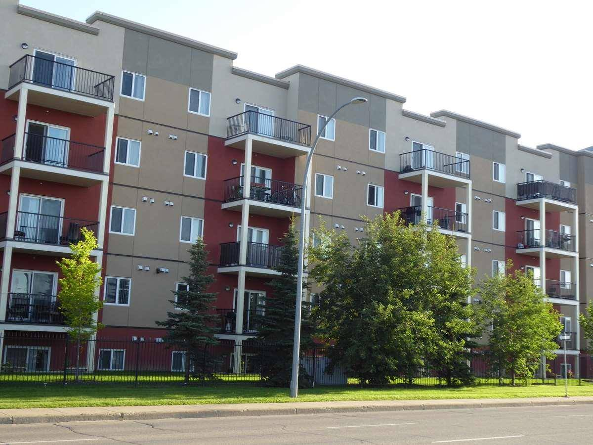 203 - 9945 167 Street Nw, Edmonton   Image 1