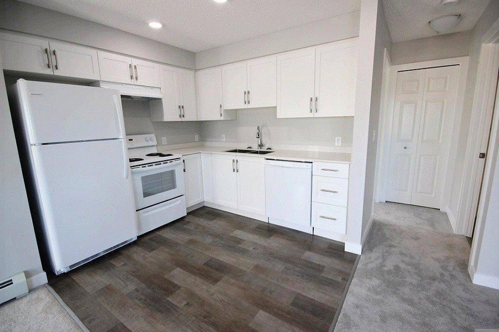 Condo for sale at 11511 27 Ave Nw Unit 205 Edmonton Alberta - MLS: E4180156
