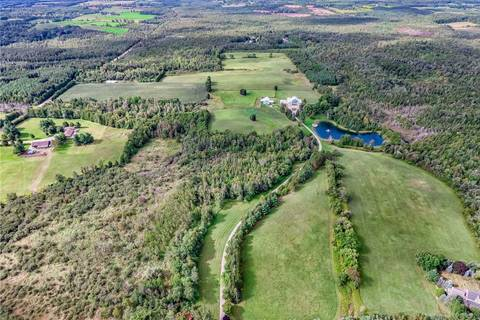 20510 Shaws Creek Road, Caledon | Image 1