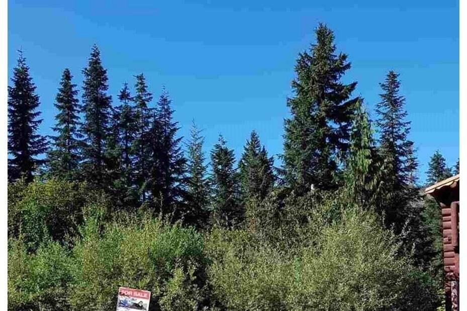 Residential property for sale at 20856 Sakwi Creek Rd Agassiz British Columbia - MLS: R2489608