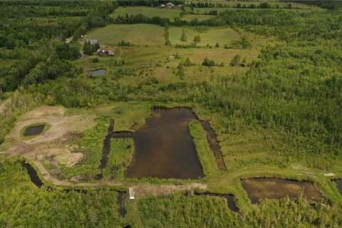 Home for sale at 214 Kagawang Rd Kawartha Lakes Ontario - MLS: X4777601