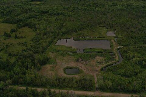 Commercial property for sale at 214 Kagawang Rd Kawartha Lakes Ontario - MLS: X4927938
