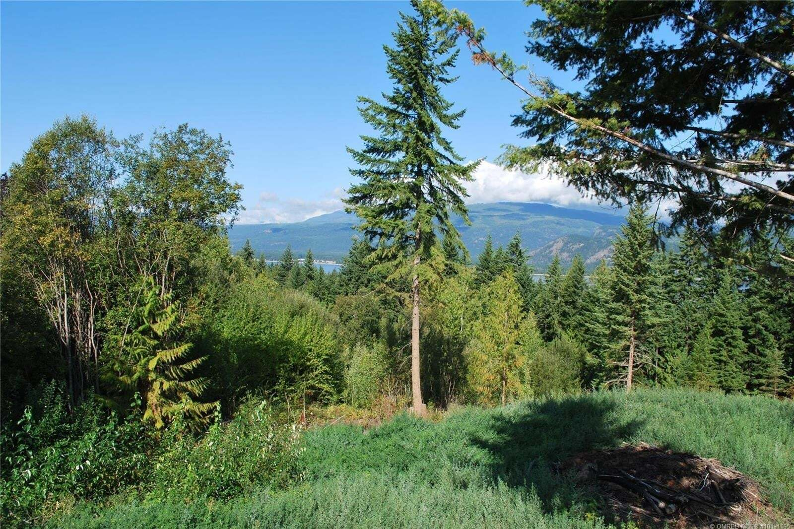 Residential property for sale at 2168 Pleasant Dale Rd West Blind Bay British Columbia - MLS: 10191165