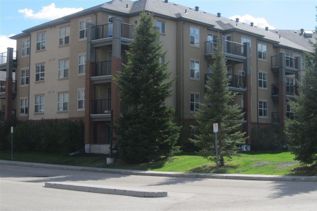 217 - 11445 Ellerslie Road SW, Edmonton | Image 2