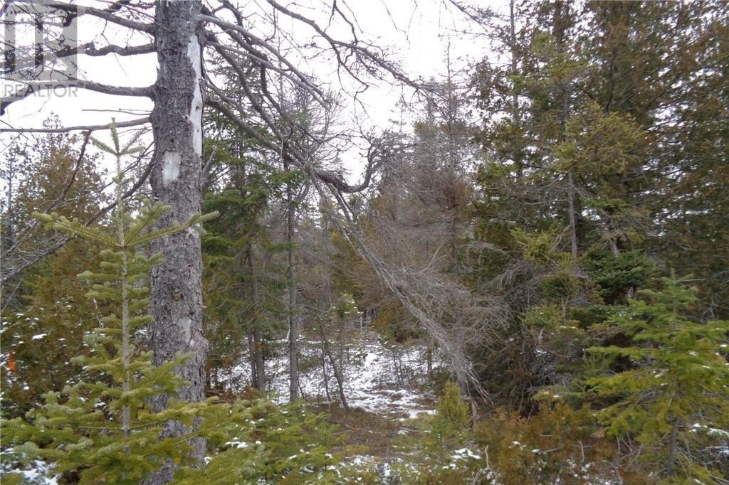 Residential property for sale at 22 Pine Tree Harbour Rd Northern Bruce Peninsula Ontario - MLS: 40045169