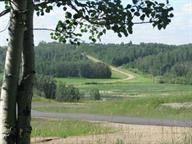 Home for sale at 49320 Range Rd Unit 220 Rural Leduc County Alberta - MLS: E4141697