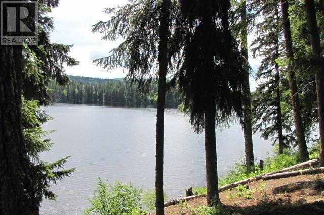 Home for sale at 2255 Mckinley Forest Service Rd Horsefly British Columbia - MLS: R2492581