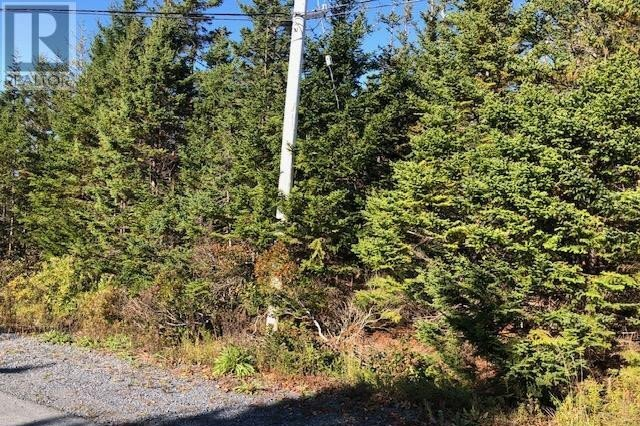 Home for sale at 24 Shannon Rd Brookside Nova Scotia - MLS: 202022888