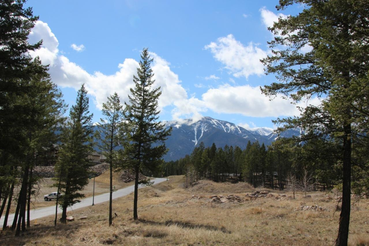 Home for sale at 2476 Castlestone Dr Invermere British Columbia - MLS: 2455263