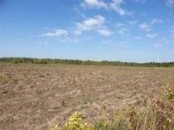 Commercial property for sale at 255472 9th Line Sdrd Amaranth Ontario - MLS: X4690787