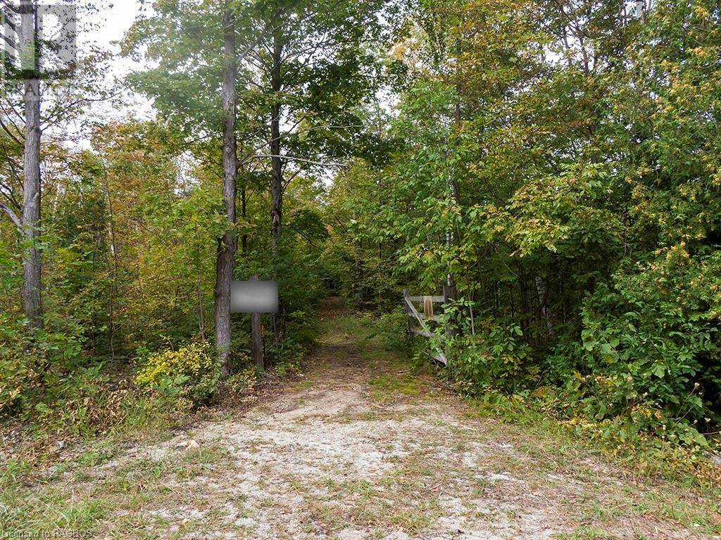 26 - 5 Pt Lot 26 Concession 5 Road, South Bruce Peninsula | Image 2