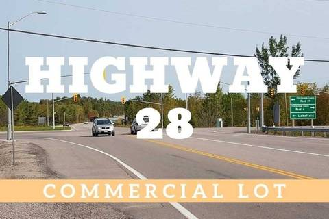 Residential property for sale at 0 Highway 28 Hy Smith-ennismore-lakefield Ontario - MLS: X4485032