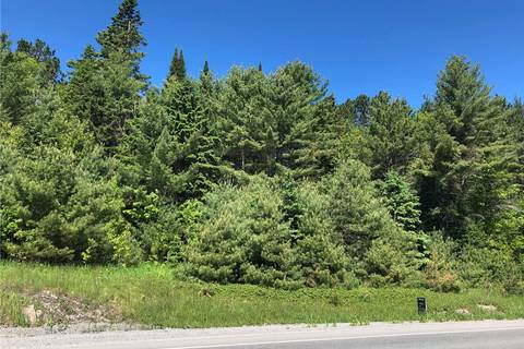 Home for sale at 8864 Highway 28 Hy North Kawartha Ontario - MLS: X4405223