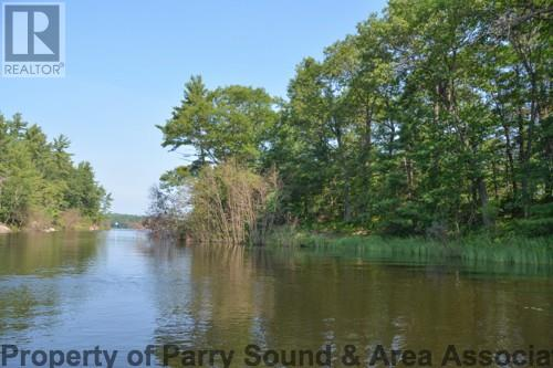 For Sale: 28 Water Access Zone G, Carling, ON   0 Bath Home for $145,000. See 11 photos!