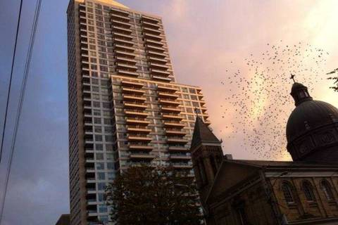 Apartment for rent at 500 Sherbourne St Unit 2801 Toronto Ontario - MLS: C4693280