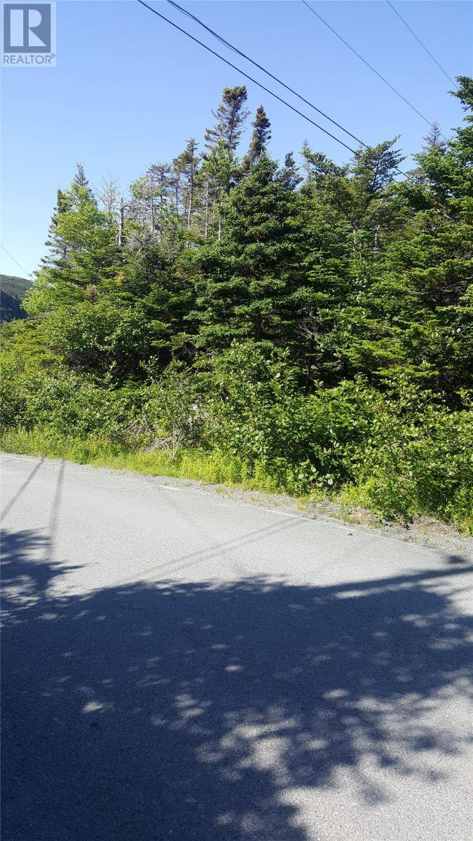 Home for sale at 29 Anglican Cemetery Rd Portugal Cove Newfoundland - MLS: 1199553
