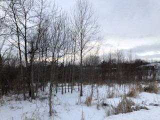 Home for sale at Lot 3 Ball Point Rd Kawartha Lakes Ontario - MLS: X4675562