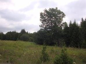 Residential property for sale at 0 Concession 3 Concession Chatsworth Ontario - MLS: X4411566