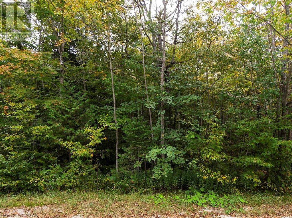 Home for sale at 3 Part Lot 26, Concession 5 Rd South Bruce Peninsula Ontario - MLS: 222790