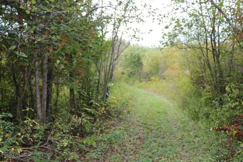 Residential property for sale at 305818 South Line A Rd Grey Highlands Ontario - MLS: X4587903