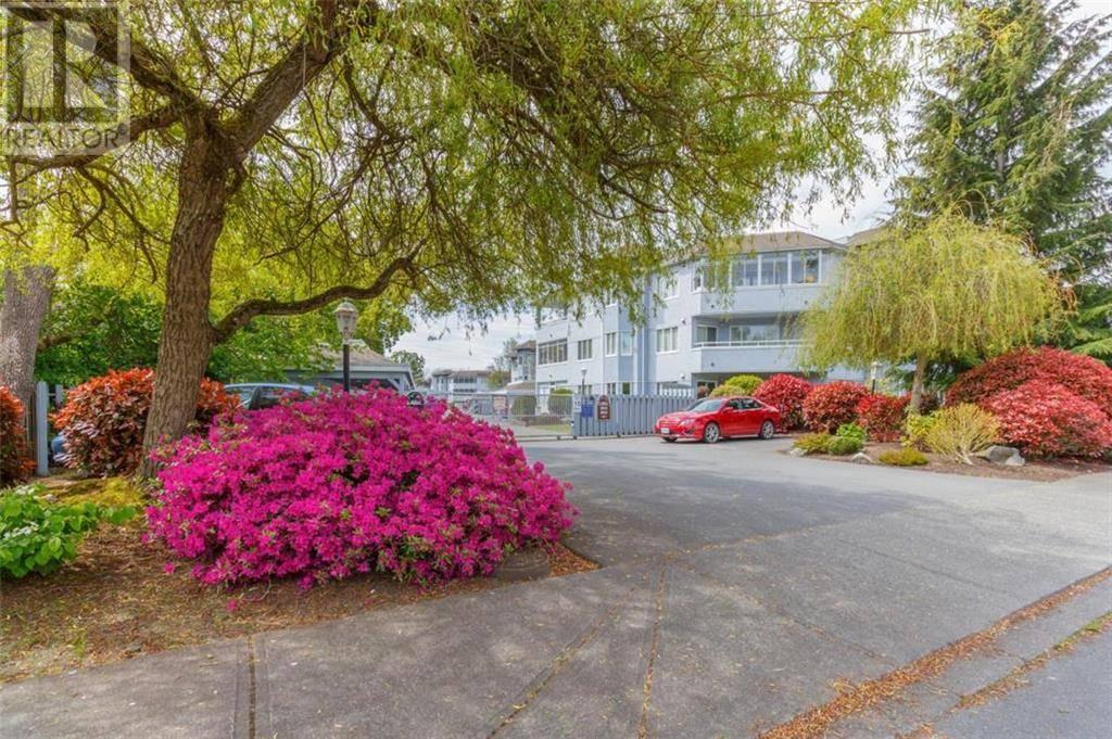 Condo for sale at 3931 Shelbourne St Unit 307 Victoria British Columbia - MLS: 423540