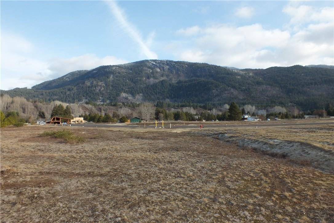 Home for sale at 307 Elkview Trail  Ootischenia British Columbia - MLS: 2436568
