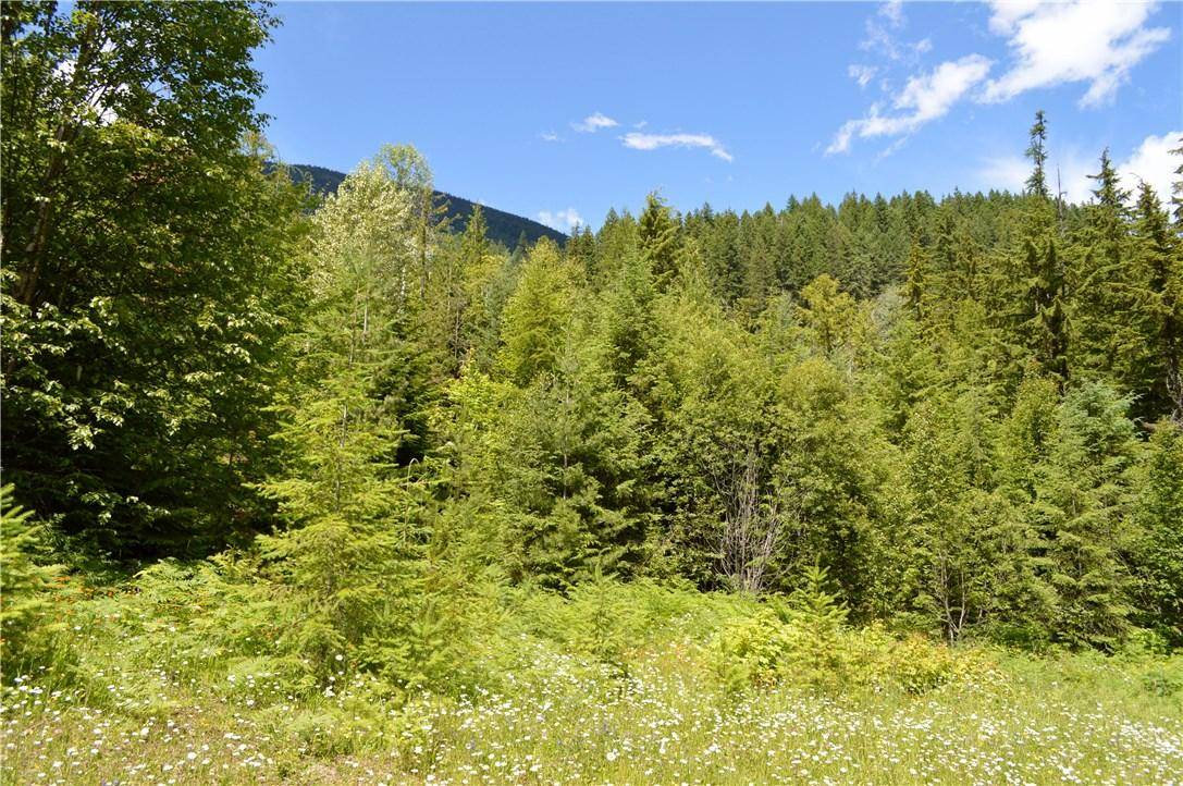 Home for sale at 0 Highway 31 Hy Unit 31 Kaslo British Columbia - MLS: 2423136