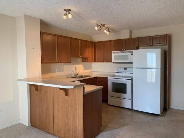 Condo for sale at 4407 23 St Nw Unit 317 Edmonton Alberta - MLS: E4190508