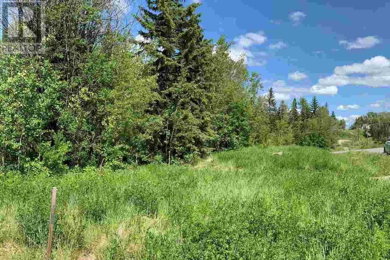 Residential property for sale at 317 W 7th St Vanderhoof British Columbia - MLS: R2465697
