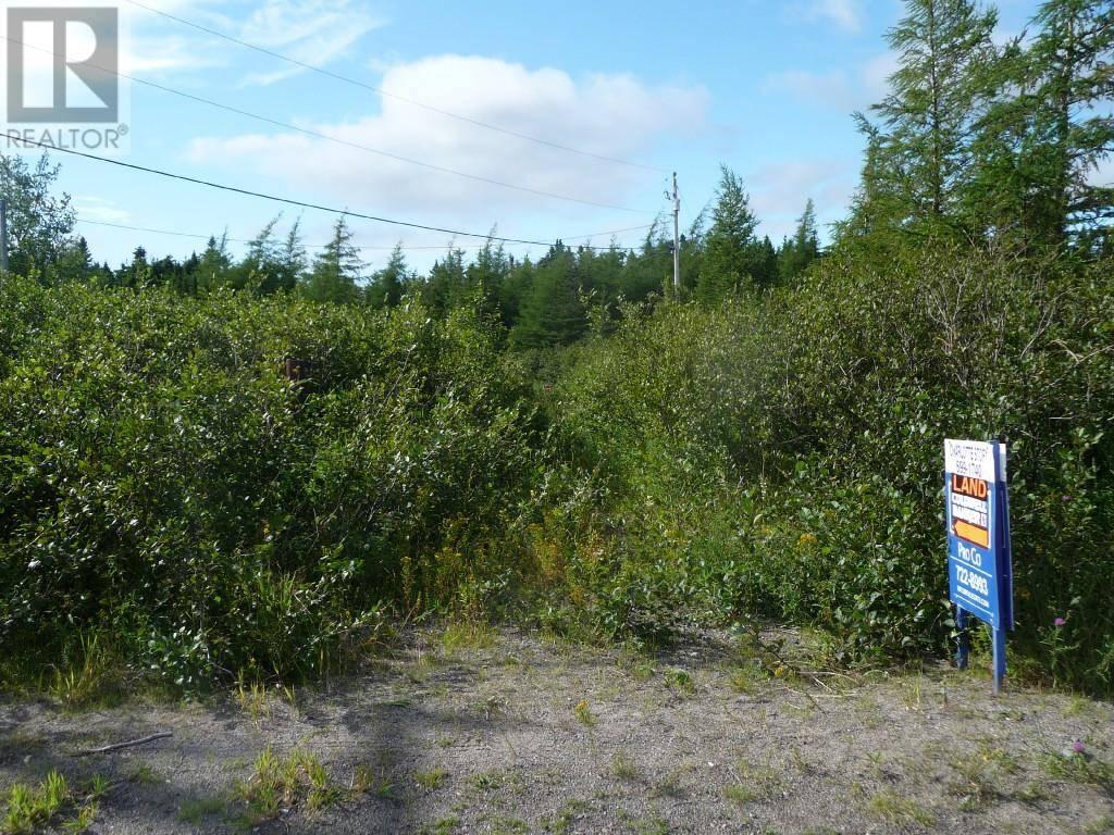 Home for sale at 32 Salmonier Line Holyrood Newfoundland - MLS: 1199716