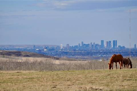 House for sale at 32026 274 Ave West De Winton Alberta - MLS: C4295219
