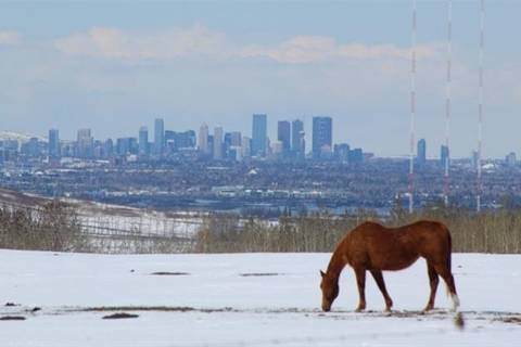 Home for sale at 32066 274 Ave West Rural Foothills County Alberta - MLS: C4261475