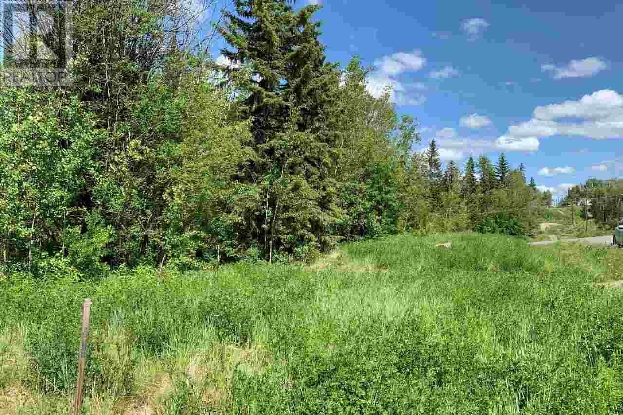 Residential property for sale at 323 W 7th St Vanderhoof British Columbia - MLS: R2465695