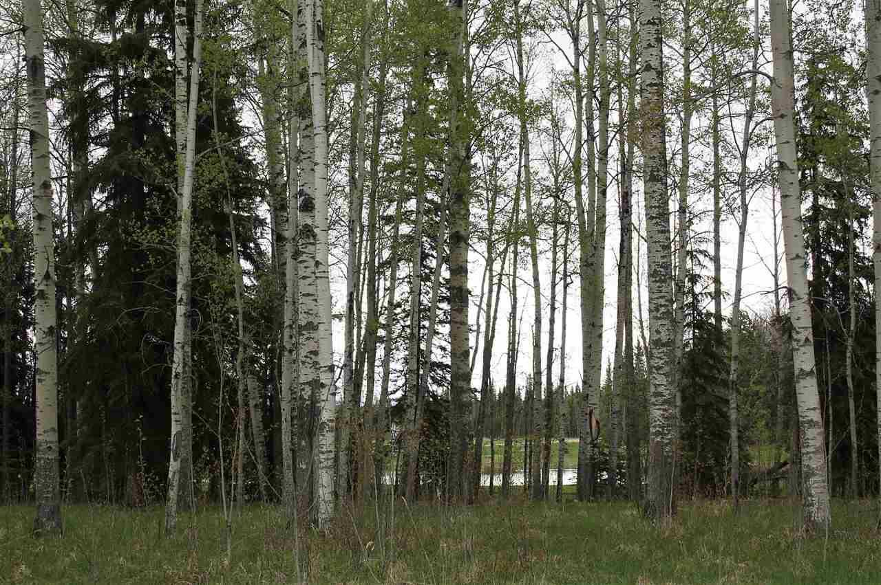 Residential property for sale at 33 Silversprings  Rural Wetaskiwin County Alberta - MLS: E4191792