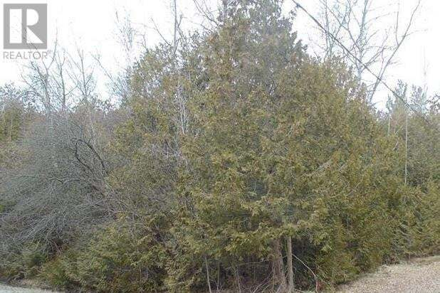 33564 Rowcliffe Drive, Central Huron | Image 2