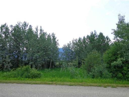 Residential property for sale at 3497 Jeck Rd Mcbride British Columbia - MLS: R2386627